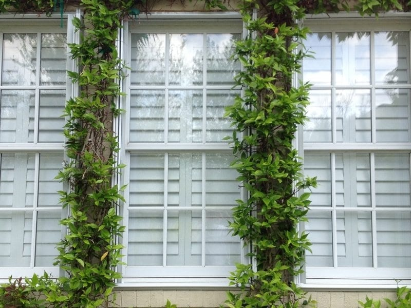 Accordion Shutters for Hurricane Protection on a White House in Wilmington